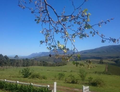 Yoga Retreat at Honeywood Farm