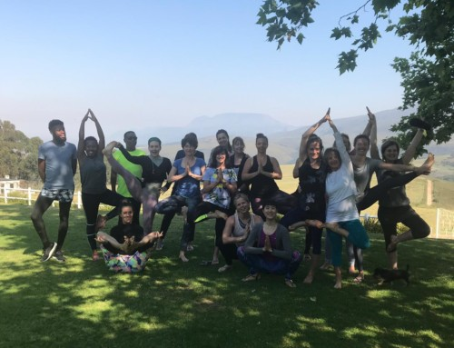 Honeywood Farm Yoga Retreat in Review